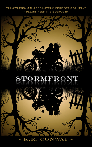 Book Review: 'Stormfront' by K.R. Conway