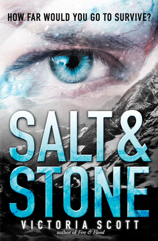 Book Review: 'Salt & Stone' by Victoria Scott